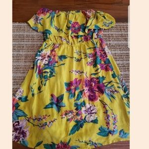 Nordstrom Dresses - Champagne and Strawberries Silk Dress LGorgeous dr